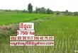ដីកសិកម្មសំរាប់ជួល Agriculture Land For Rent